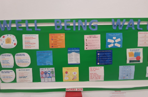 ria pupil wellbeing